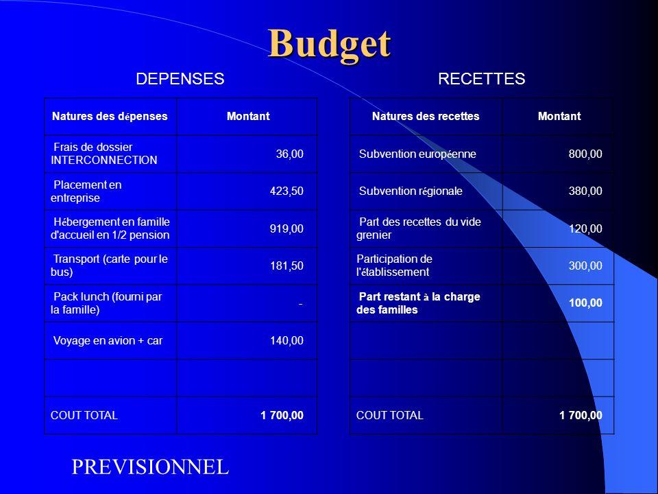 Budget DEPENSESRECETTES Natures des dépenses MontantNatures des recettes Montant Frais de dossier INTERCONNECTION 36,00 Subvention européenne 800,00 P