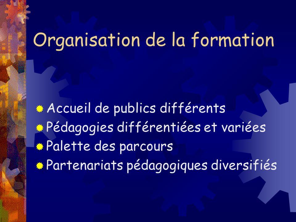 Organisation de la formation Accueil de publics différents Pédagogies différentiées et variées Palette des parcours Partenariats pédagogiques diversif