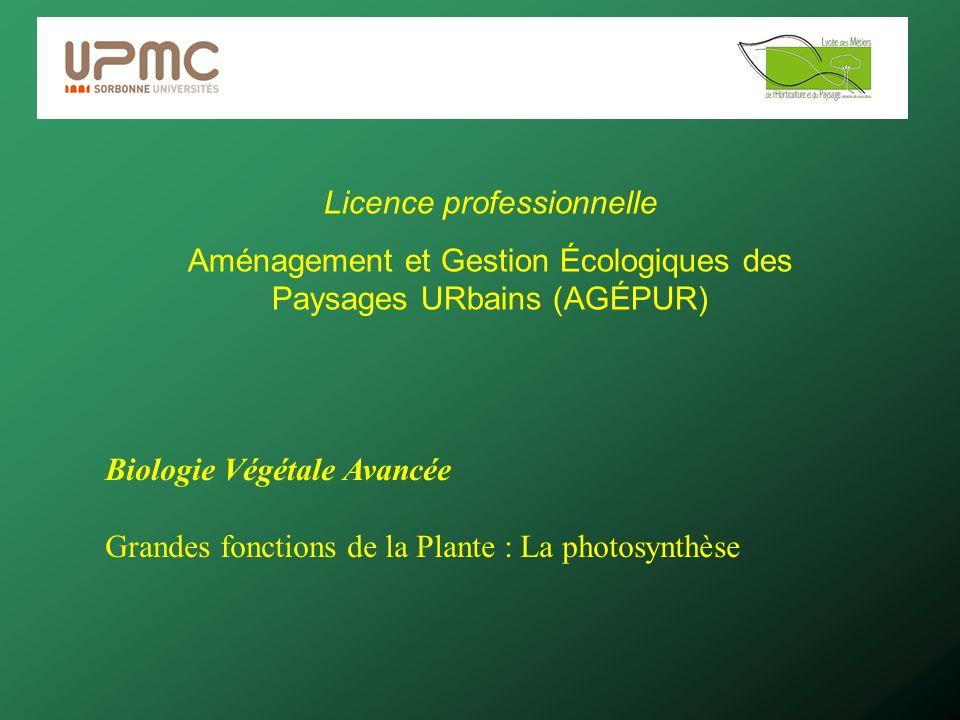 Licence professionnelle Aménagement et Gestion Écologiques des Paysages URbains (AGÉPUR) Biologie Végétale Avancée Grandes fonctions de la Plante : La