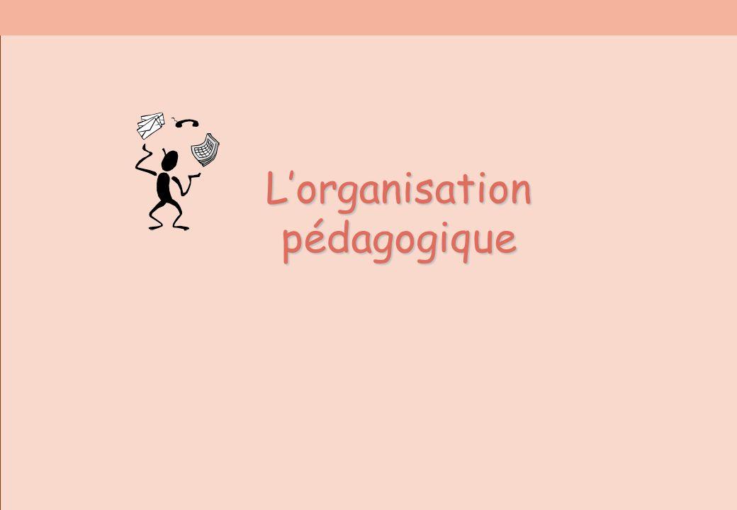 Lorganisation pédagogique