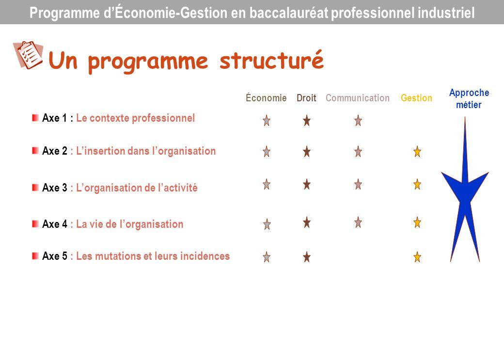 Un programme structuré Axe 1 : Le contexte professionnel Axe 2 : Linsertion dans lorganisation Axe 3 : Lorganisation de lactivité Axe 4 : La vie de lo