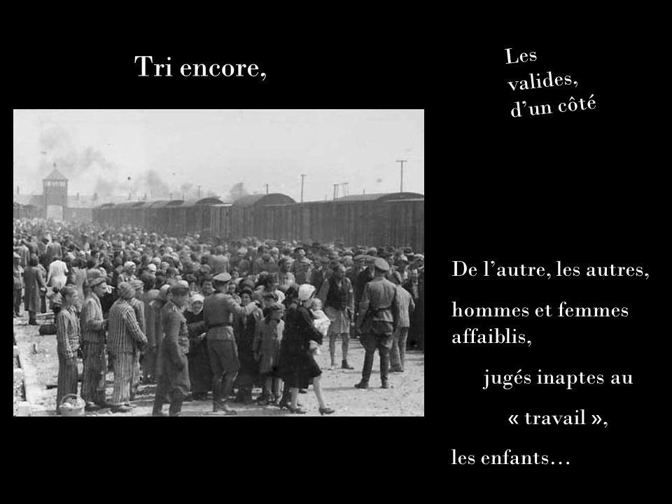 Tri encore, Les valides, dun côté De lautre, les autres, hommes et femmes affaiblis, jugés inaptes au « travail », les enfants…