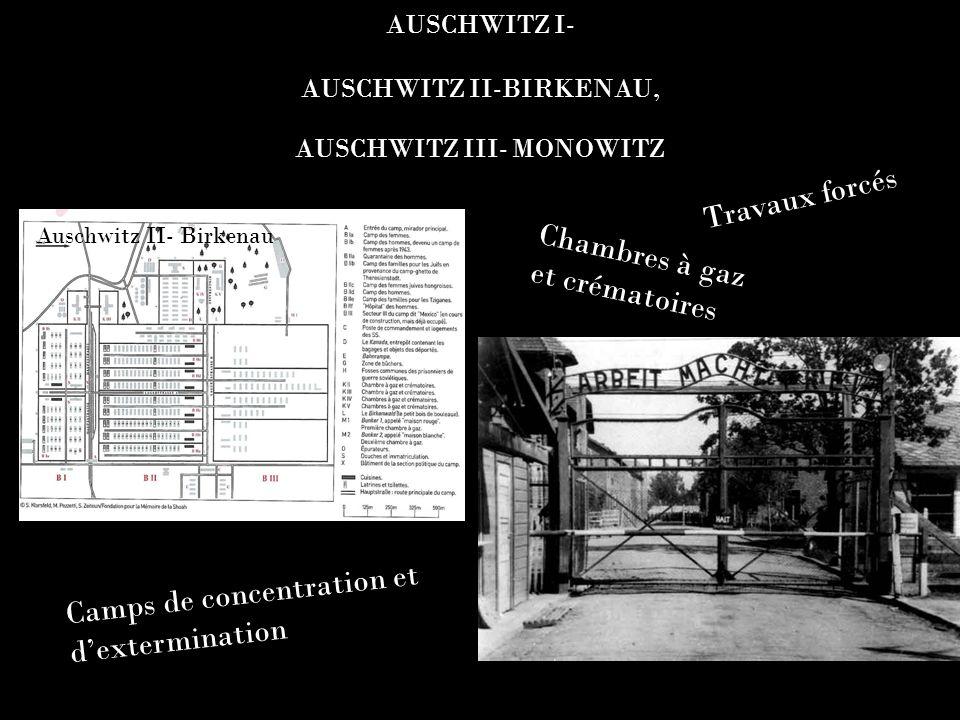 AUSCHWITZ I- AUSCHWITZ II-BIRKENAU, AUSCHWITZ III- MONOWITZ Auschwitz I Auschwitz II- Birkenau Camps de concentration et dextermination Travaux forcés