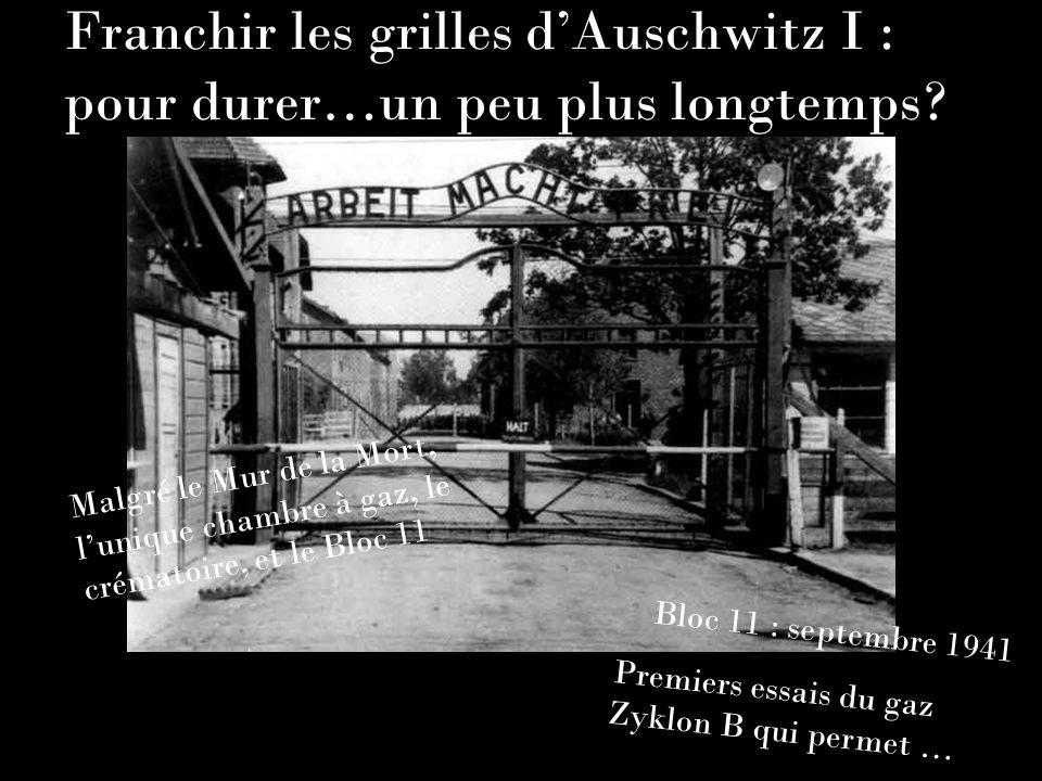Franchir les grilles dAuschwitz I : pour durer…un peu plus longtemps? Malgré le Mur de la Mort, lunique chambre à gaz, le crématoire, et le Bloc 11 Bl
