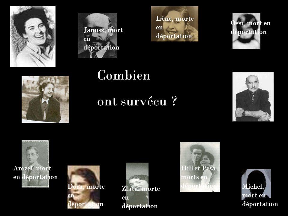 Combien ont survécu ? Janusz, mort en déportation Irène, morte en déportation Ossi, mort en déportation Michel, mort en déportation Hill et Pesa, mort
