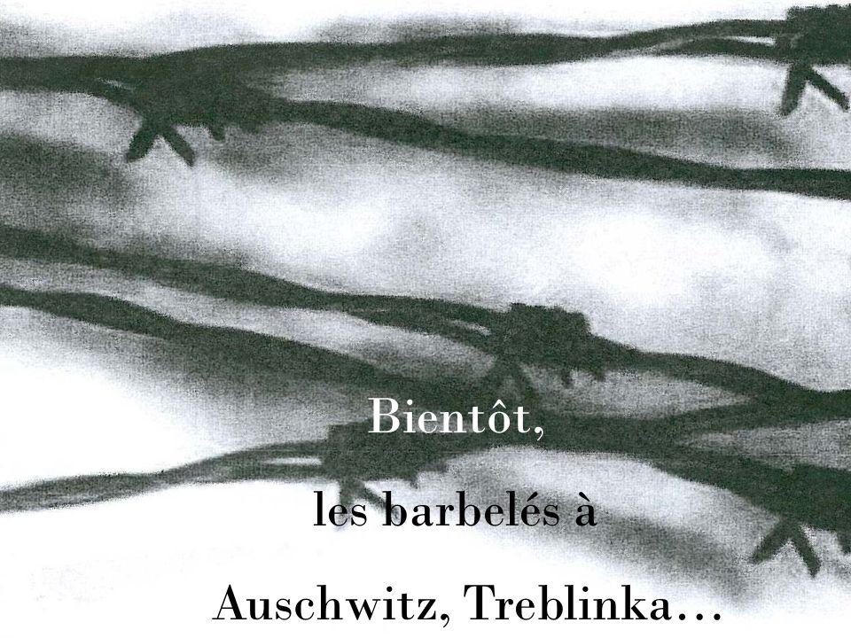 Bientôt, les barbelés à Auschwitz, Treblinka…