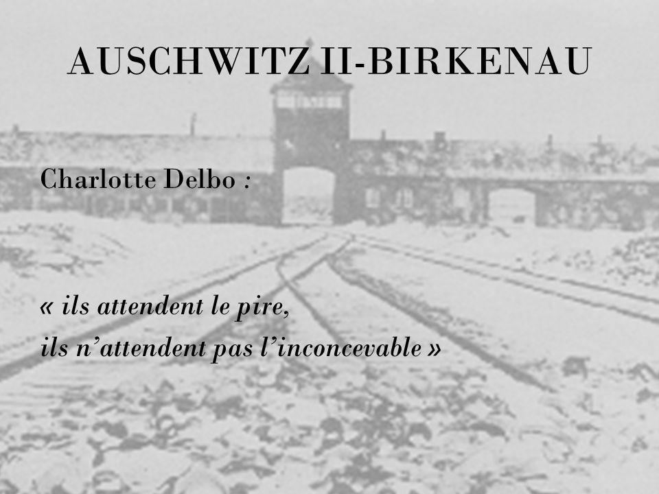 AUSCHWITZ II-BIRKENAU Charlotte Delbo : « ils attendent le pire, ils nattendent pas linconcevable »