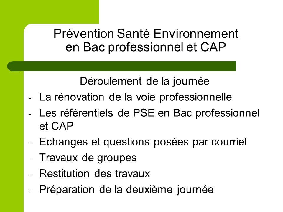 Prévention Santé Environnement en Bac professionnel et CAP Déroulement de la journée - La rénovation de la voie professionnelle - Les référentiels de PSE en Bac professionnel et CAP - Echanges et questions posées par courriel - Travaux de groupes - Restitution des travaux - Préparation de la deuxième journée