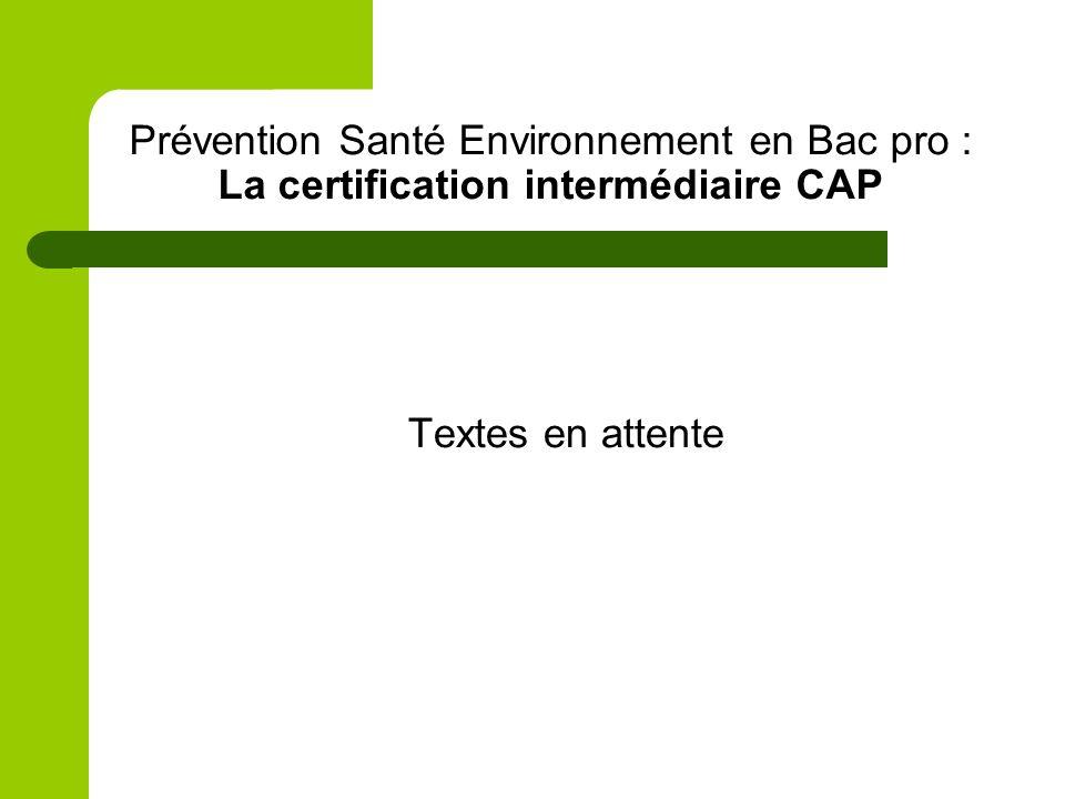Prévention Santé Environnement en Bac pro : La certification intermédiaire CAP Textes en attente