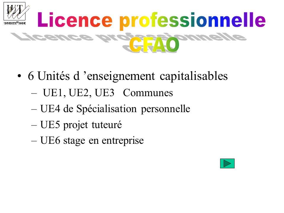 6 Unités d enseignement capitalisables – UE1, UE2, UE3 Communes –UE4 de Spécialisation personnelle –UE5 projet tuteuré –UE6 stage en entreprise