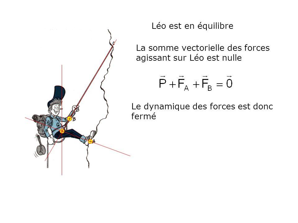 La somme vectorielle des forces agissant sur Léo est nulle Léo est en équilibre Le dynamique des forces est donc fermé