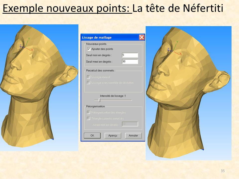 Exemple nouveaux points: La tête de Néfertiti 35