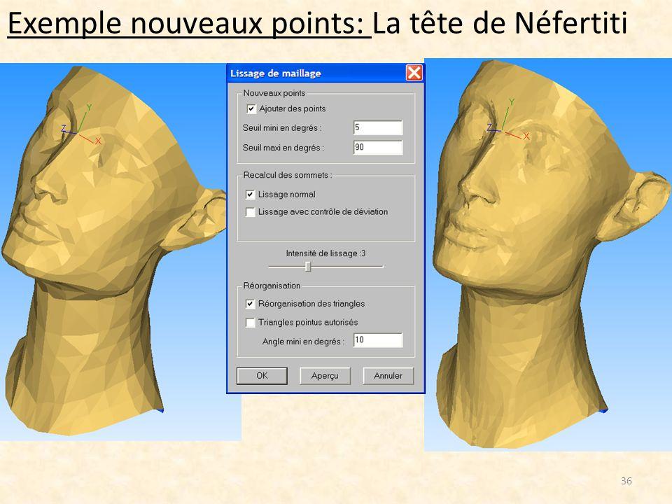Exemple nouveaux points: La tête de Néfertiti 36