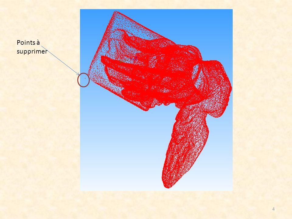 Prendre directement les points du nuage : Erreur cordale sans réduction de bruit (tous les points): les points sont sélectionnés en fonction d une erreur de déviation 3D.
