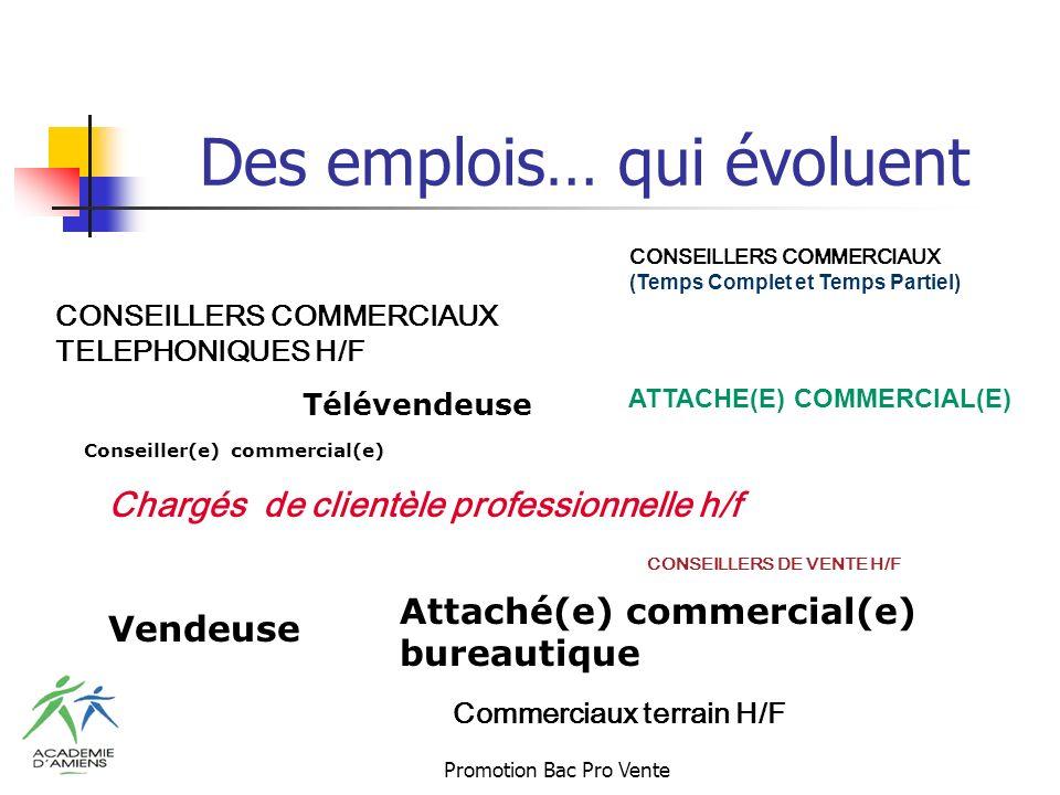 Promotion Bac Pro Vente Des emplois… qui évoluent CONSEILLERS COMMERCIAUX (Temps Complet et Temps Partiel) CONSEILLERS DE VENTE H/F Chargés de clientèle professionnelle h/f Commerciaux terrain H/F Vendeuse Attaché(e) commercial(e) bureautique CONSEILLERS COMMERCIAUX TELEPHONIQUES H/F Conseiller(e) commercial(e) ATTACHE(E) COMMERCIAL(E) Télévendeuse