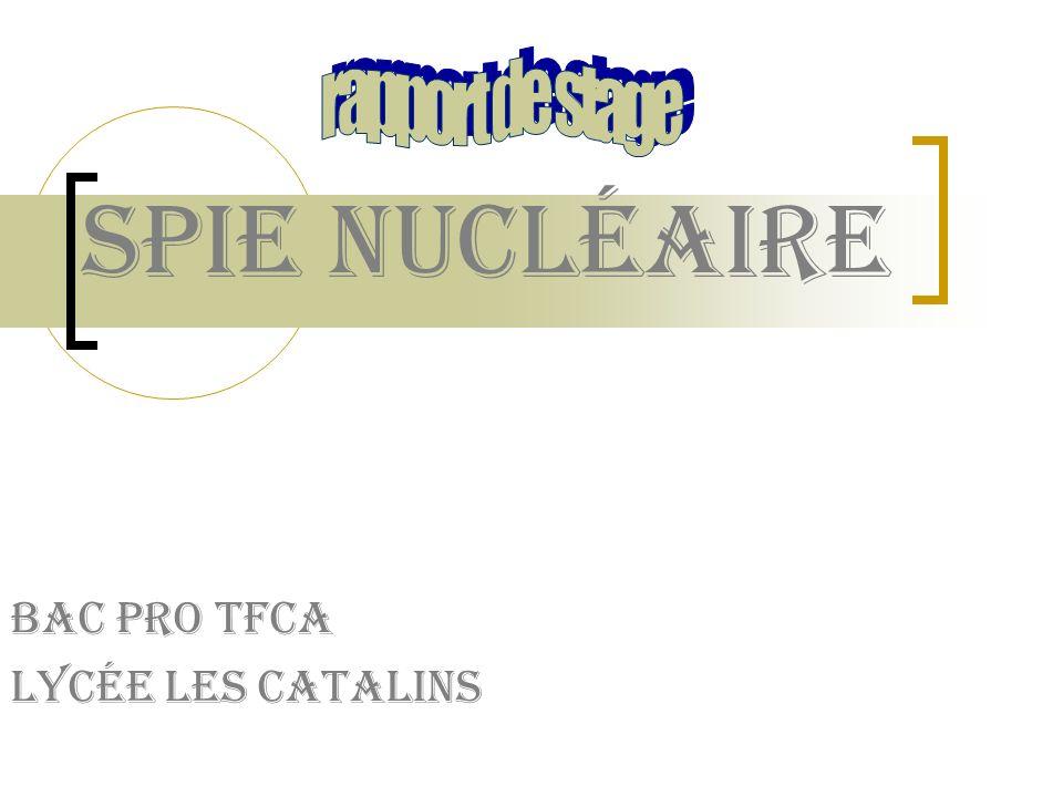 Spie nucléaire Bac pro TFCA Lycée les catalins