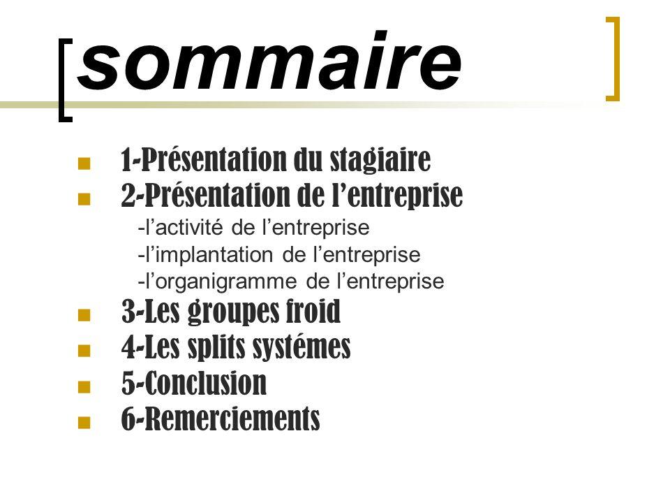 sommaire 1-Présentation du stagiaire 2-Présentation de lentreprise -lactivité de lentreprise -limplantation de lentreprise -lorganigramme de lentrepri