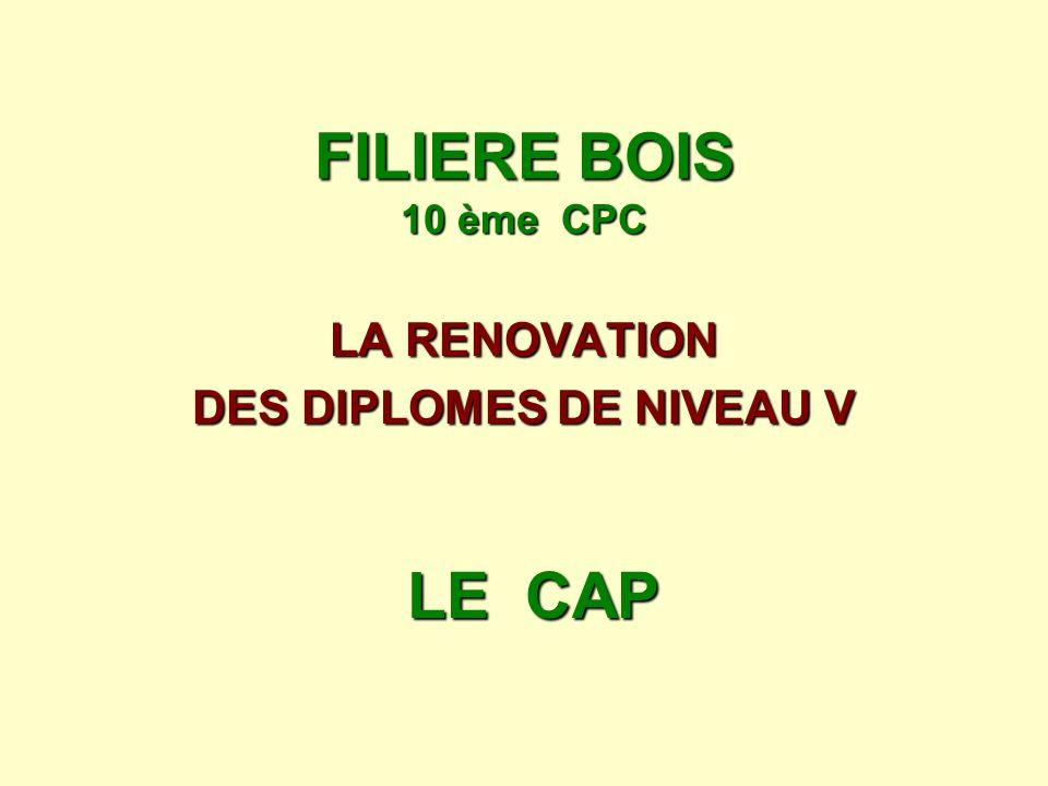 FILIERE BOIS 10 ème CPC LA RENOVATION DES DIPLOMES DE NIVEAU V LE CAP