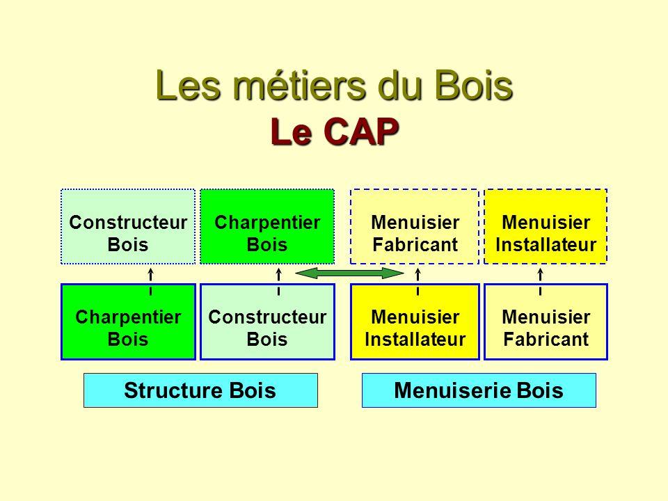 Les métiers du Bois Le CAP Charpentier Bois Constructeur Bois Menuisier Fabricant Menuisier Installateur Structure BoisMenuiserie Bois Constructeur Bo