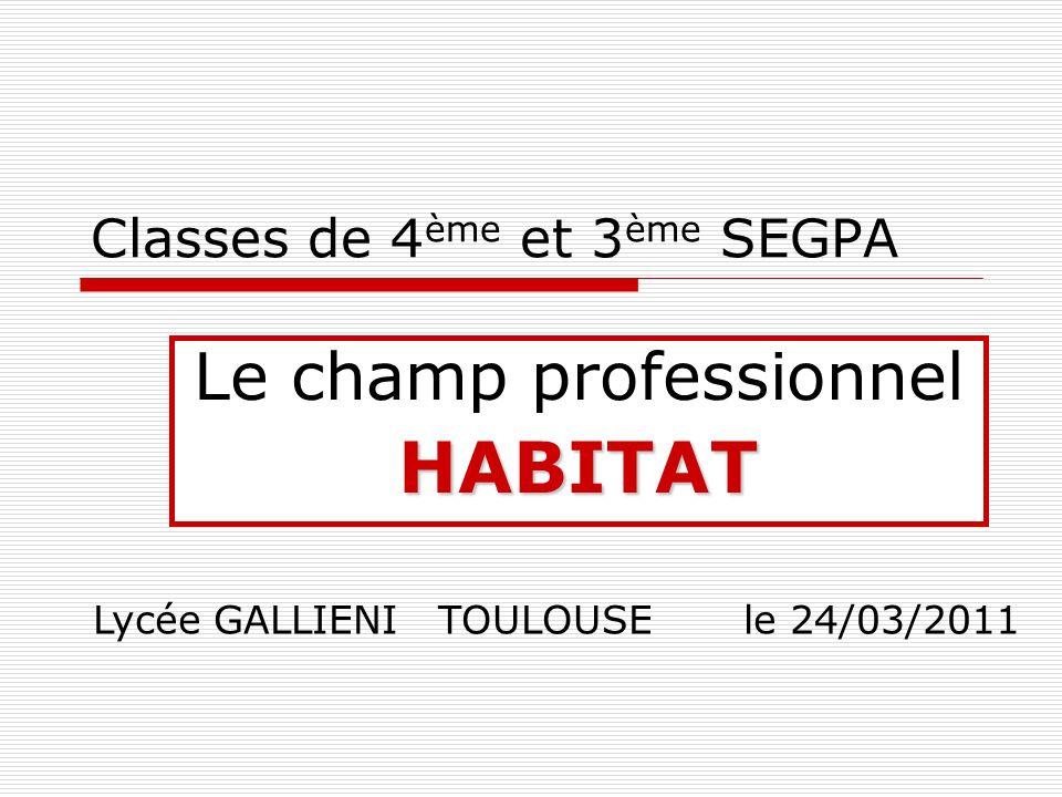 Classes de 4 ème et 3 ème SEGPA Le champ professionnelHABITAT Lycée GALLIENI TOULOUSE le 24/03/2011