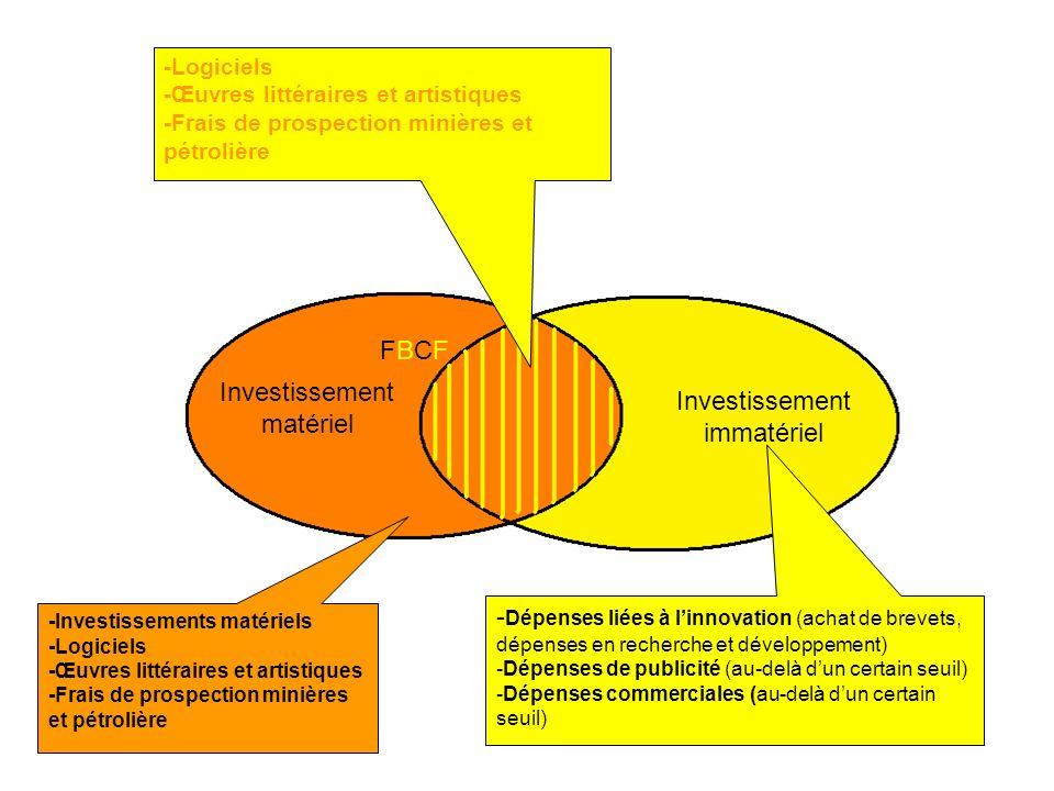 Investissement matériel Investissement immatériel FBCFFBCF -Logiciels -Œuvres littéraires et artistiques -Frais de prospection minières et pétrolière