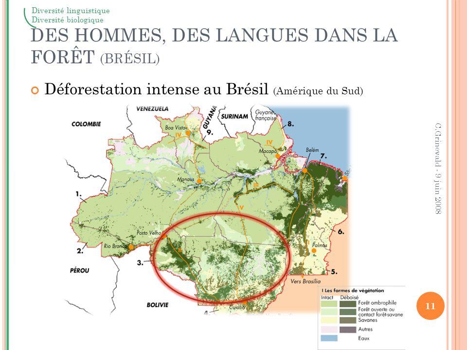 12 C.Grinevald - 9 juin 2008 Diversité linguistiqueDiversité biologique DES HOMMES, DES LANGUES DANS LA FORÊT Langues en danger dans la même région (Brésil - Amérique du Sud) UNESCO - Wurm