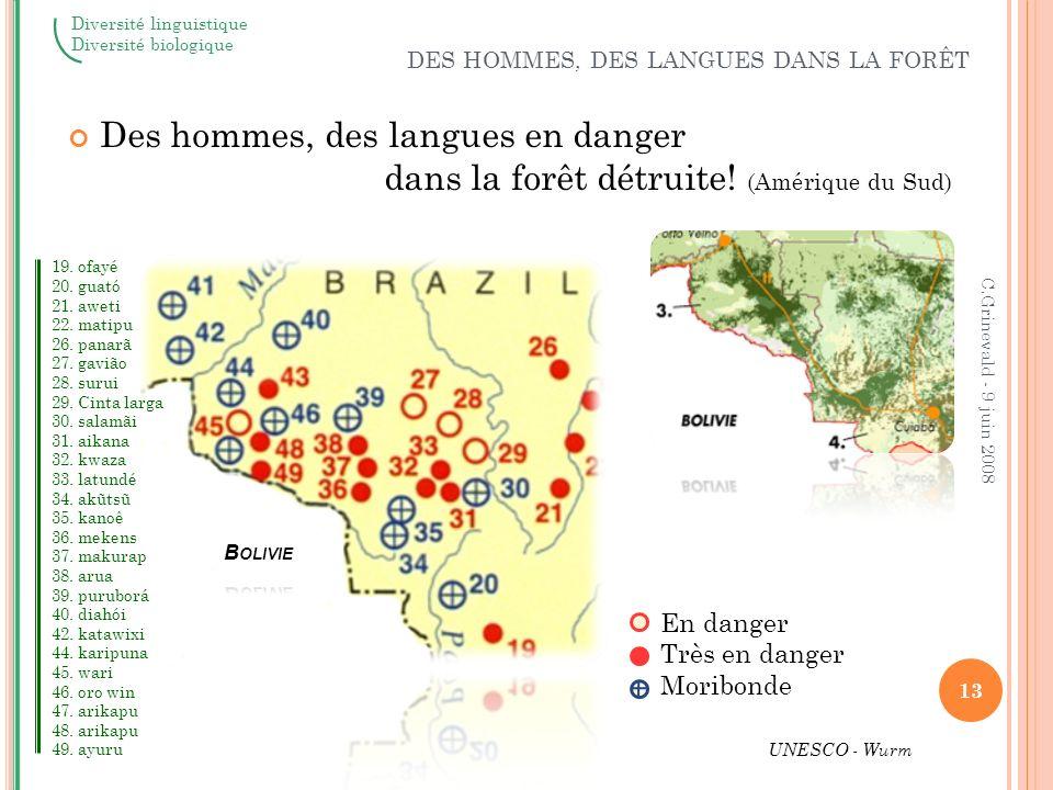Les causes de la disparition des langues « Meurtres » : Mort des populations par massacre, maladie, déportation « Discrimination » : Politique linguistique pour éradiquer les langues.