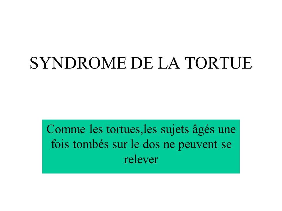 SYNDROME DE LA TORTUE Comme les tortues,les sujets âgés une fois tombés sur le dos ne peuvent se relever