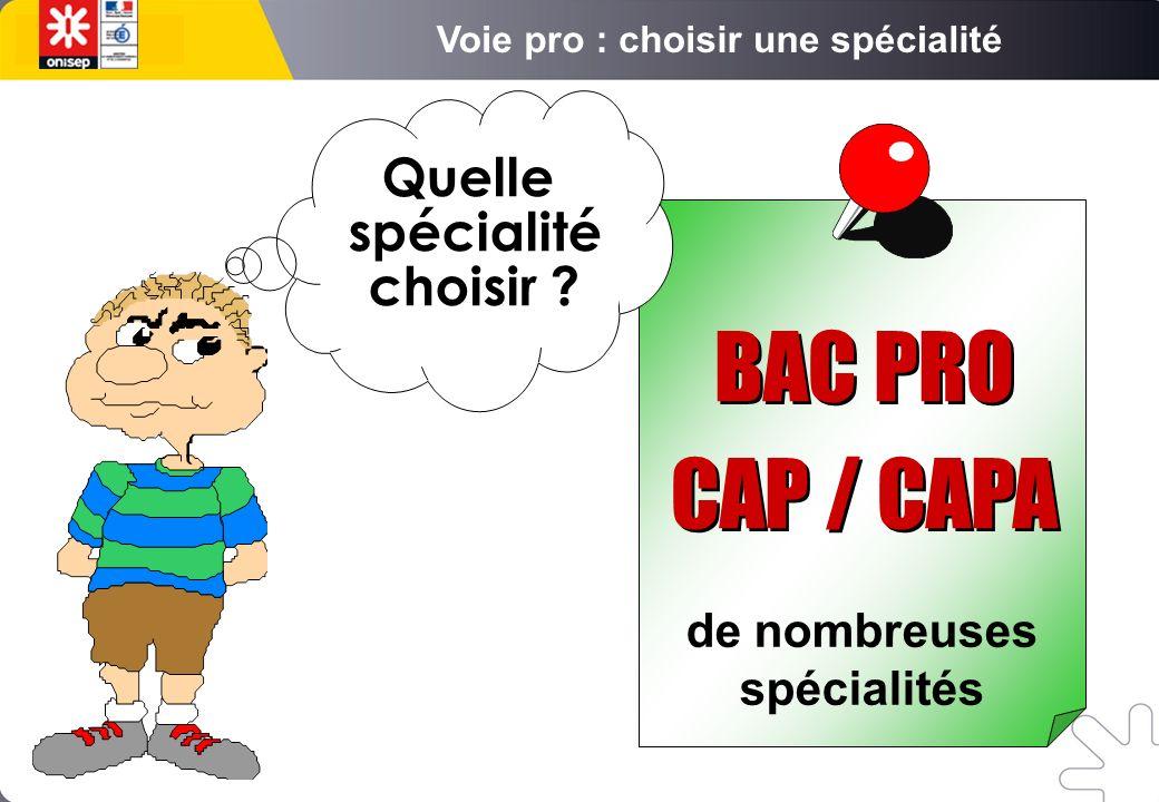 de nombreuses spécialités Quelle spécialité choisir BAC PRO CAP / CAPA BAC PRO CAP / CAPA