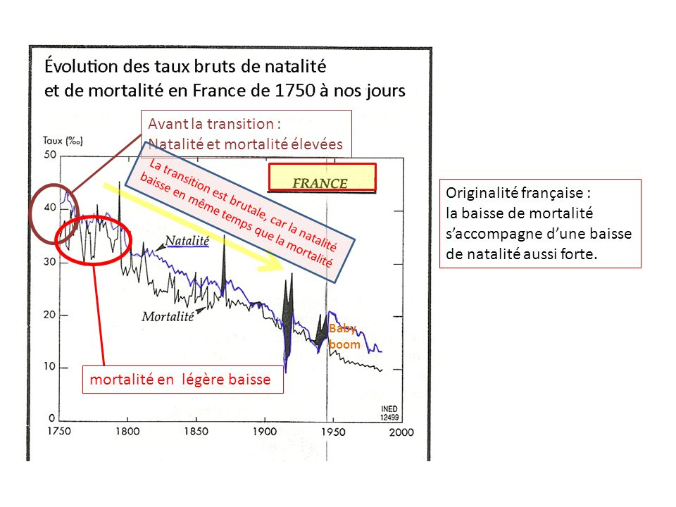 Avant la transition : Natalité et mortalité élevées mortalité en légère baisse Originalité française : la baisse de mortalité saccompagne dune baisse