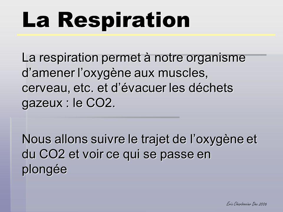 Eric Charbonnier Dec 2006 La Respiration 1.Les voies aériennes supérieures : Fosses nasales, etc… 2.Les poumons 3.Les échanges gazeux dans les poumons 4.Le sang… déjà vu… 5.Les échanges gazeux au niveau cellulaire 6.La regulation du CO2