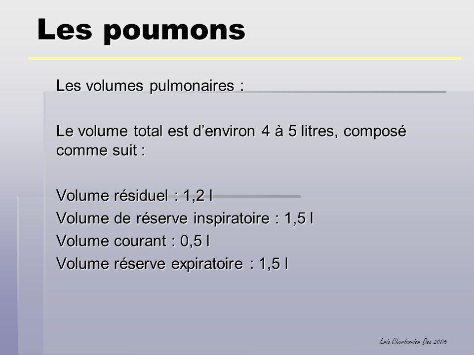 Eric Charbonnier Dec 2006 Les poumons Les volumes pulmonaires : Le volume total est denviron 4 à 5 litres, composé comme suit : Volume résiduel : 1,2