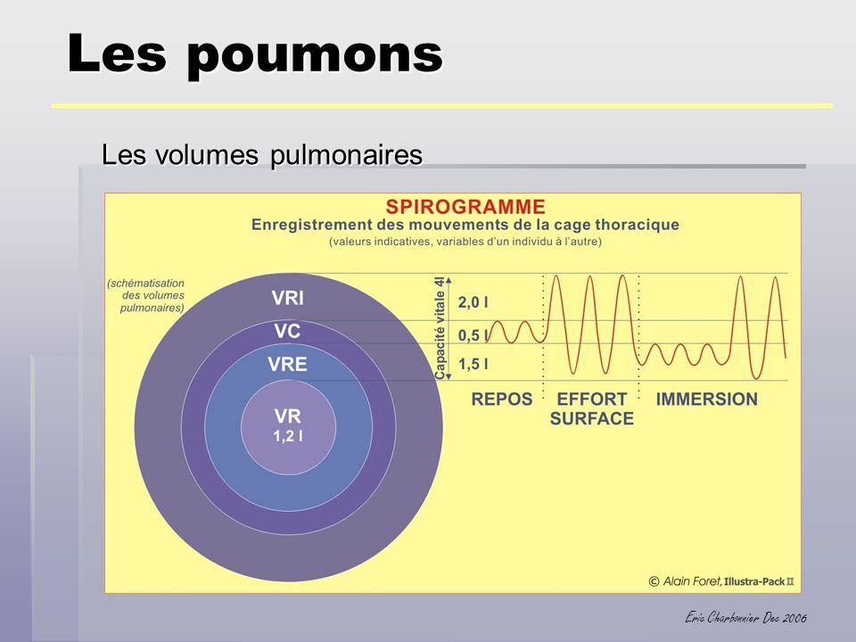 Eric Charbonnier Dec 2006 Les poumons Les volumes pulmonaires