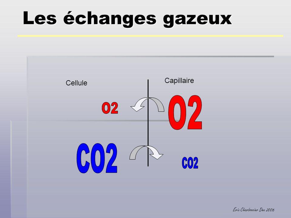 Eric Charbonnier Dec 2006 Les échanges gazeux Cellule Capillaire