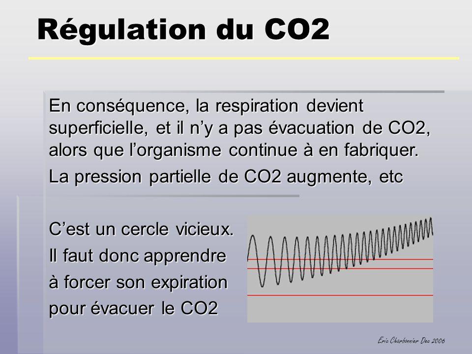 Eric Charbonnier Dec 2006 Régulation du CO2 En conséquence, la respiration devient superficielle, et il ny a pas évacuation de CO2, alors que lorganis