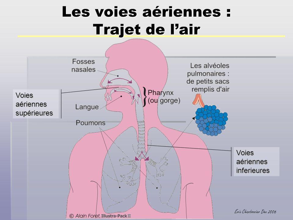 Eric Charbonnier Dec 2006 Les poumons En plongée, la pression augmente, donc la masse volumique du mélange et la résistance à lécoulement.