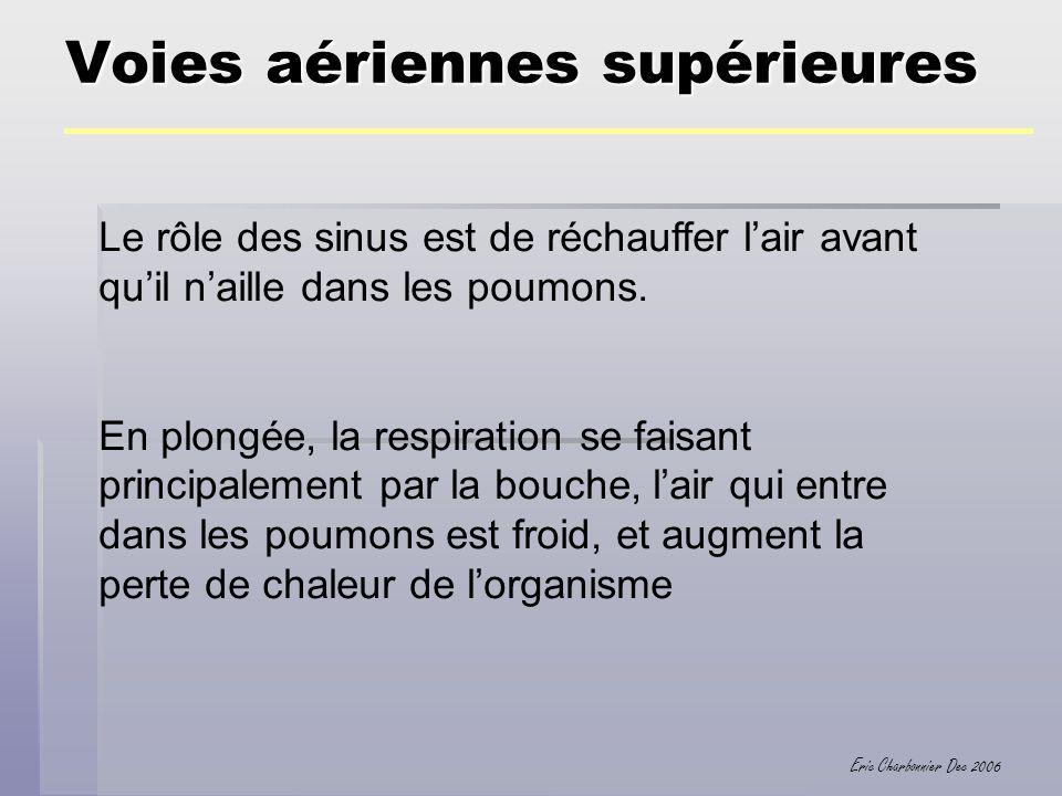 Eric Charbonnier Dec 2006 Les poumons Volume Residuel : 1,2 l Volume incompressible des poumons et des voies aériennes.