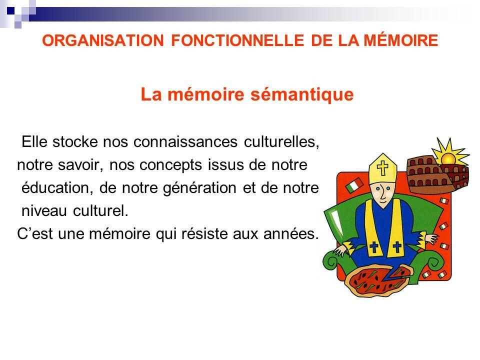 ORGANISATION FONCTIONNELLE DE LA MÉMOIRE La mémoire sémantique Elle stocke nos connaissances culturelles, notre savoir, nos concepts issus de notre éd