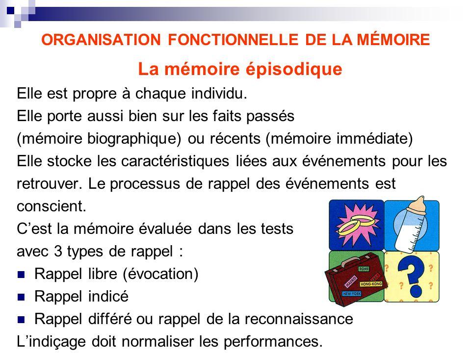 ORGANISATION FONCTIONNELLE DE LA MÉMOIRE La mémoire épisodique Elle est propre à chaque individu. Elle porte aussi bien sur les faits passés (mémoire