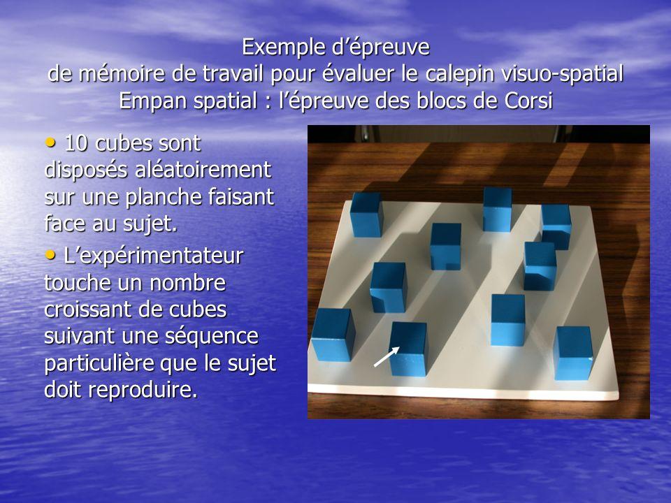 Exemple dépreuve de mémoire de travail pour évaluer le calepin visuo-spatial Empan spatial : lépreuve des blocs de Corsi 10 cubes sont disposés aléato