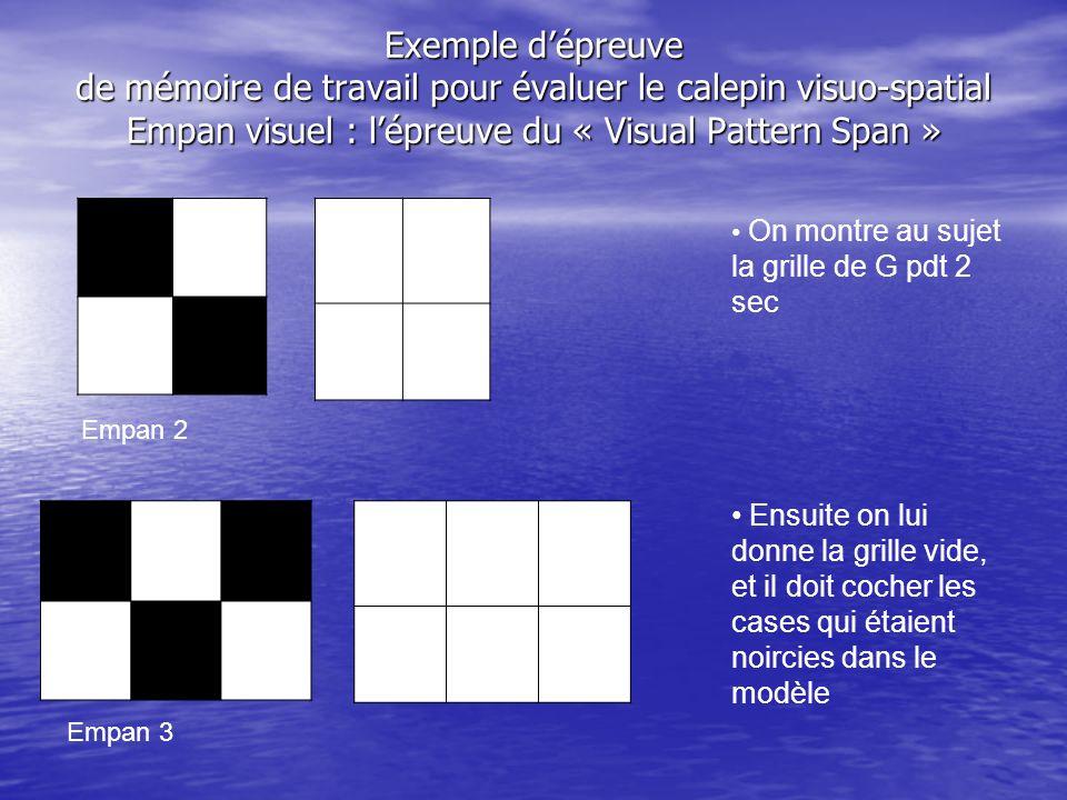 Exemple dépreuve de mémoire de travail pour évaluer le calepin visuo-spatial Empan visuel : lépreuve du « Visual Pattern Span » Empan 2 Empan 3 On mon