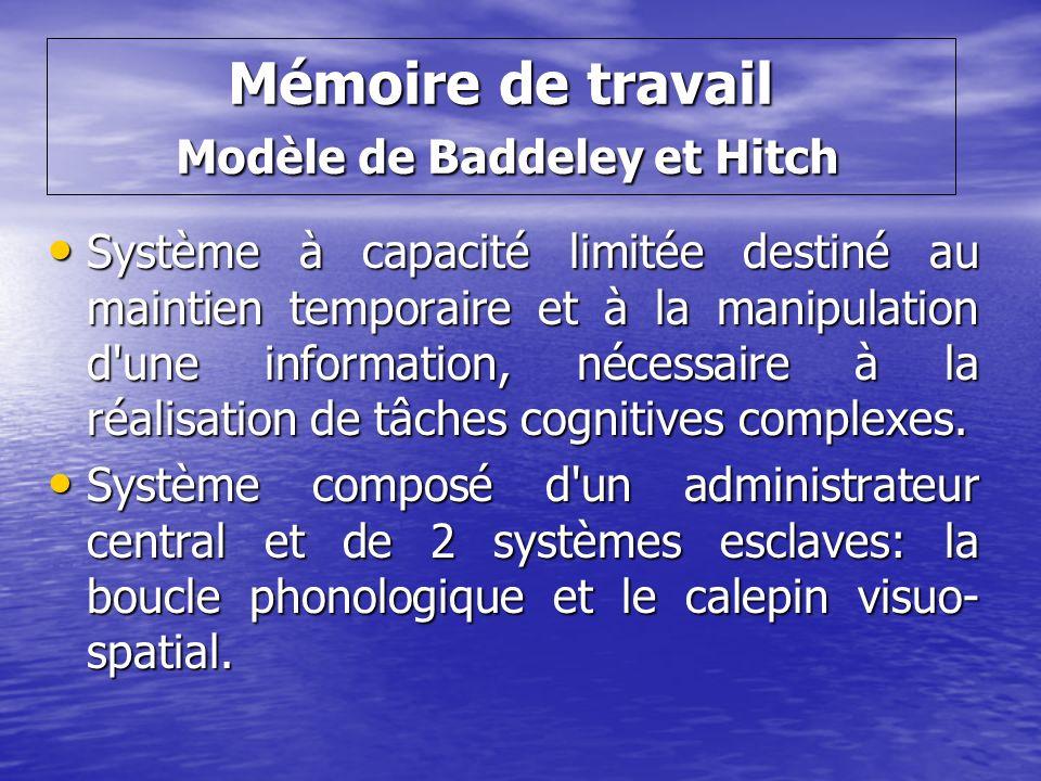 Mémoire de travail Modèle de Baddeley et Hitch Système à capacité limitée destiné au maintien temporaire et à la manipulation d'une information, néces