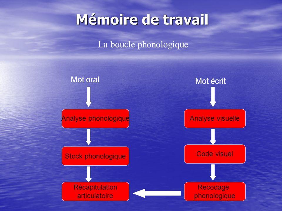 Mémoire de travail Analyse visuelle Code visuel Recodage phonologique Analyse phonologique Stock phonologique Récapitulation articulatoire Mot écrit M