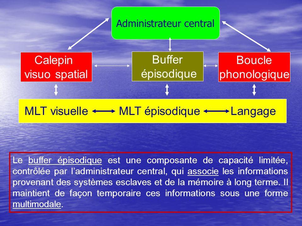 Calepin visuo spatial Buffer épisodique Boucle phonologique MLT visuelle MLT épisodique Langage Le buffer épisodique est une composante de capacité li