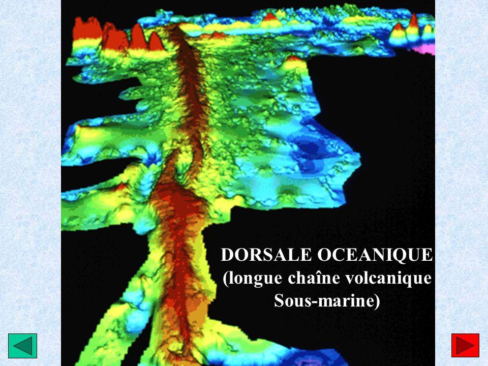 DORSALE OCEANIQUE (longue chaîne volcanique Sous-marine)