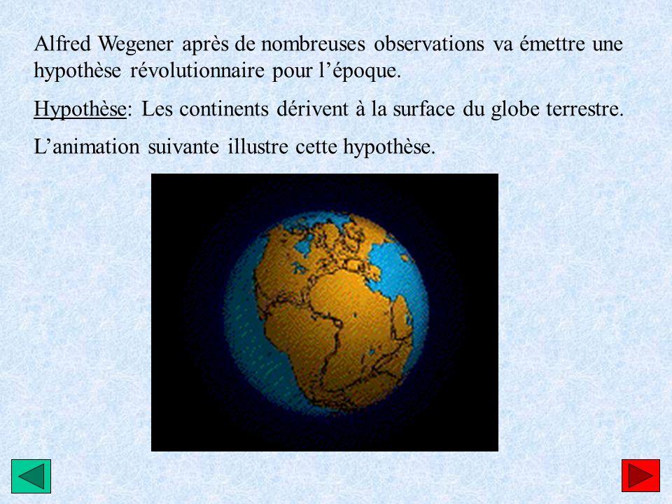 Alfred Wegener après de nombreuses observations va émettre une hypothèse révolutionnaire pour lépoque. Hypothèse: Les continents dérivent à la surface