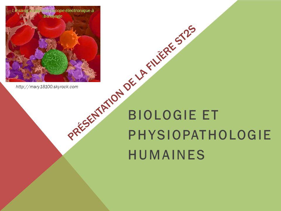 PRÉSENTATION DE LA FILIÈRE ST2S BIOLOGIE ET PHYSIOPATHOLOGIE HUMAINES http://mary18100.skyrock.com Le sang vu au microscope électronique à balayage