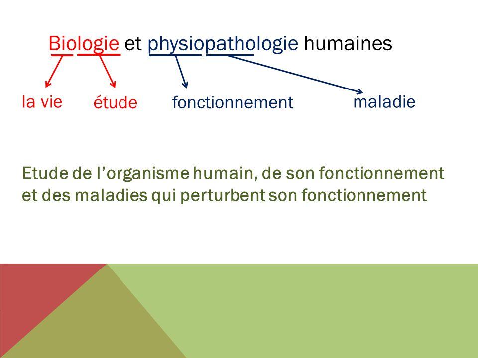 Biologie et physiopathologie humaines la vie fonctionnement étude maladie Etude de lorganisme humain, de son fonctionnement et des maladies qui pertur