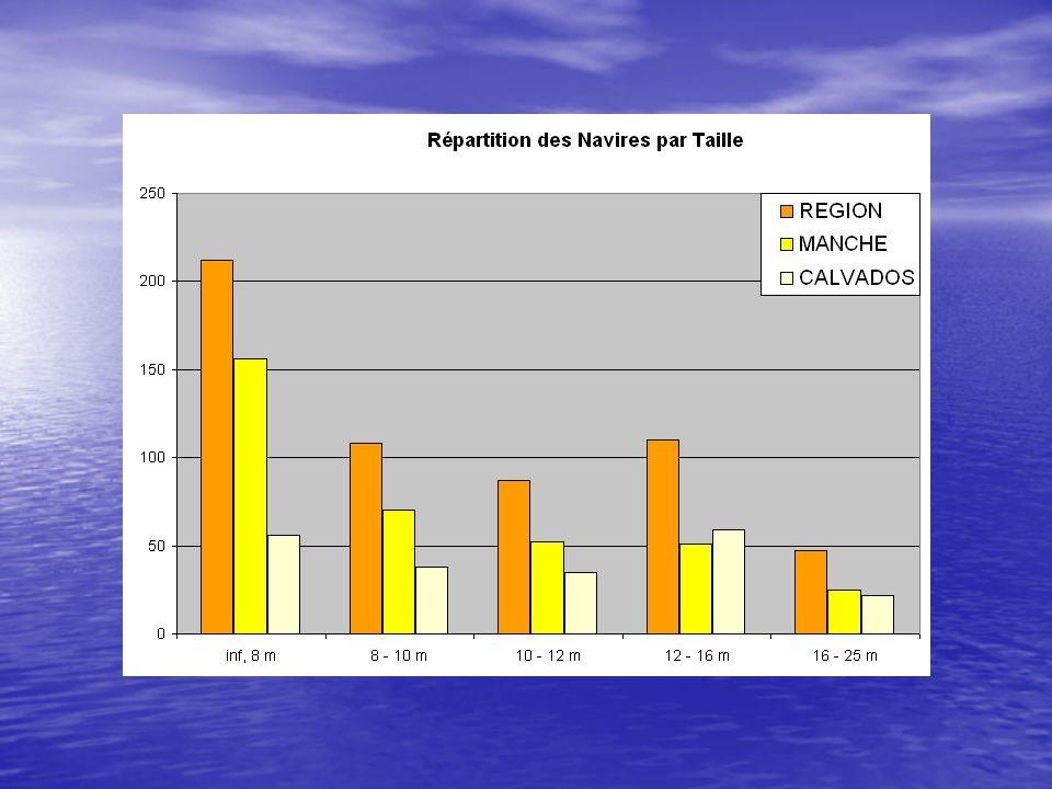 LES PRINCIPAUX PRODUITS COQUILLAGES (60%) : bulots, coquilles ST-J, moules, praires, ormeaux… COQUILLAGES (60%) : bulots, coquilles ST-J, moules, praires, ormeaux… CEPHALOPODES (14%) : seiches, encornets CEPHALOPODES (14%) : seiches, encornets POISSONS (24%) : poissons plats, morues, roussettes… POISSONS (24%) : poissons plats, morues, roussettes… CRUSTACES (2%) : homards, araignées, tourteaux, étrilles… CRUSTACES (2%) : homards, araignées, tourteaux, étrilles…