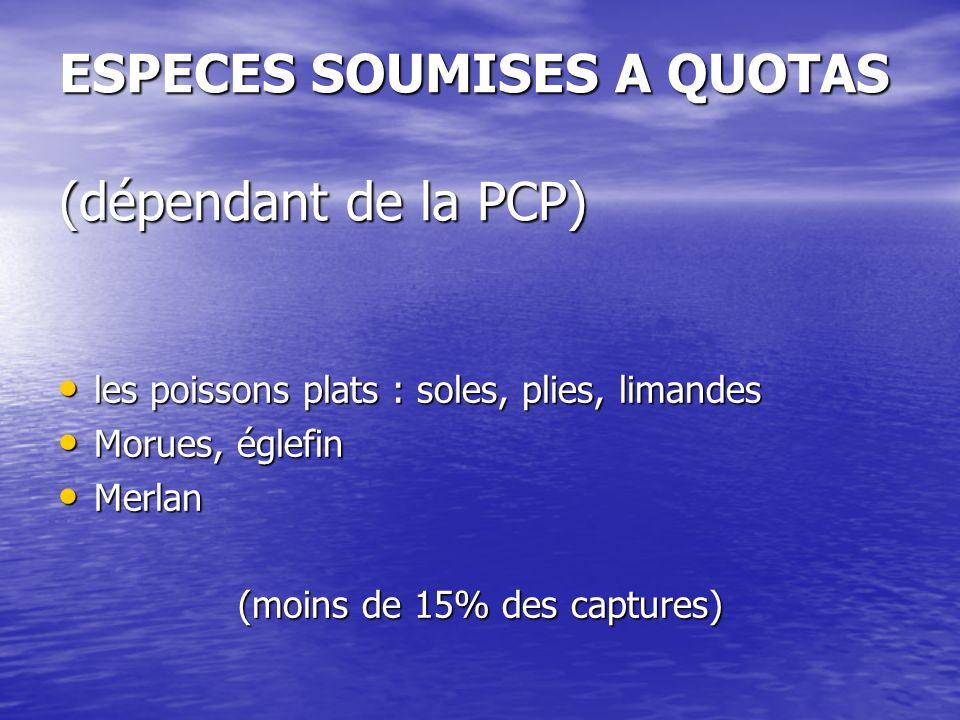 ESPECES SOUMISES A QUOTAS (dépendant de la PCP) les poissons plats : soles, plies, limandes les poissons plats : soles, plies, limandes Morues, églefi